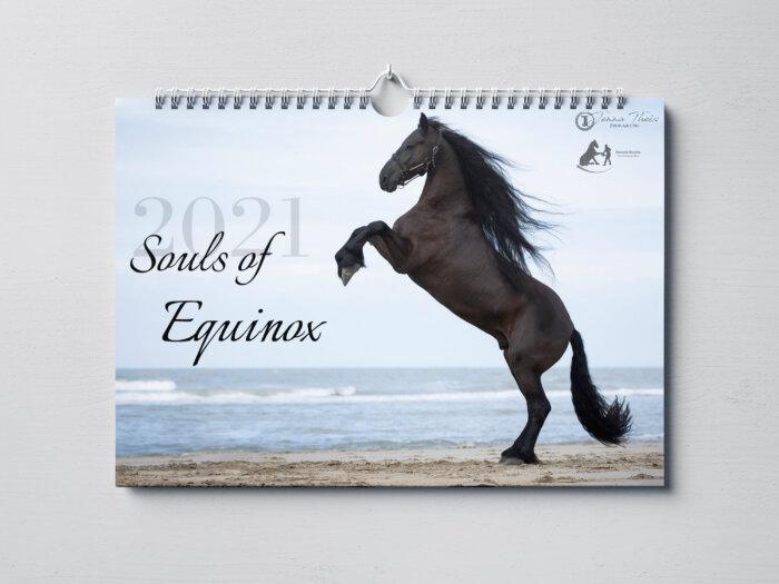 Deckblatt Souls of Equinox Kalender 2021